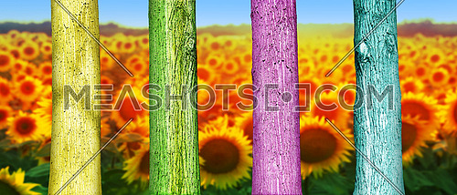Colorfull Tree Trunks in theField. Abstract Psychedelic Colors