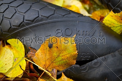 Close-up on old used and broken rubber tyre in yellow autumn leaves