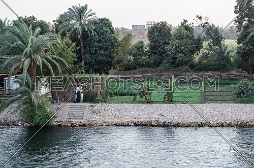 Nile river and landscape with trees and plants