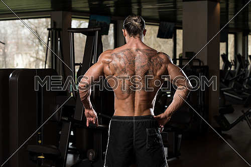 Portrait Of A Physically Fit Man In Modern Fitness Center - Showing Back Poses