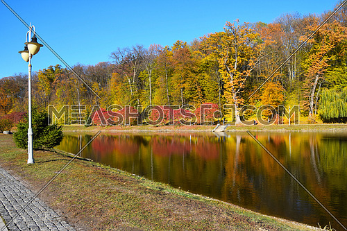 Autumn park landscape of colorful yellow and red trees, blue sky and street lamp post with reflection in calm water of pond or lake