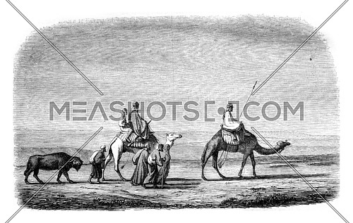 Drawing by Marilhat, for after his chart sets, vintage engraved illustration. Magasin Pittoresque 1846.