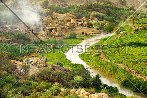 Landscape of greenery around small water canal in Fayoum, Egypt