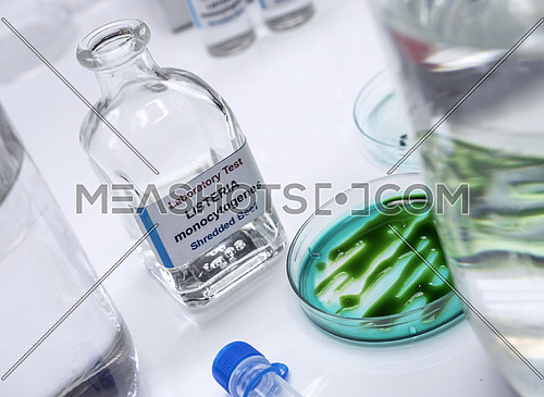 Samples you analyze of stuffed meat contaminated by bacterium of listeria in laboratory, sprout caused in Spain