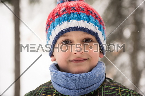 portrait of happy smiling little boy child outdoors having fun and playing on snowy winter day