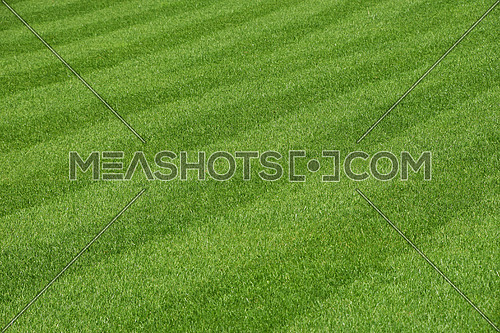Green fresh grass lawn with stripes after mow on football field, high angle view perspective