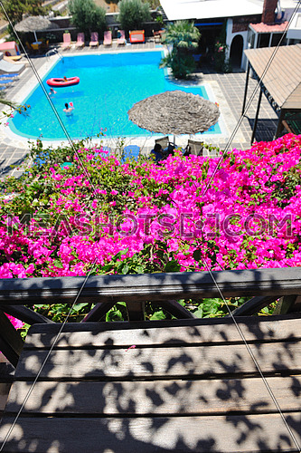 romantic balcony with flowers and swimming  pool view