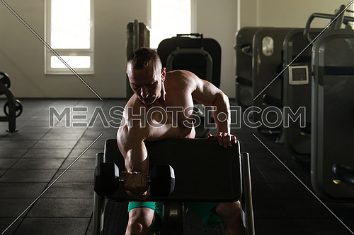 Siluet Muscular Young Man Doing Heavy Weight Exercise For Biceps With Dumbbells In Modern Fitness Center Gym
