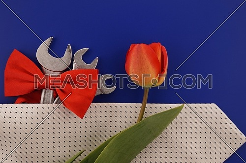 Spanners tied with a red bow, necktie and colorful orange red spring tulip over a blue background and free copy space for your greeting