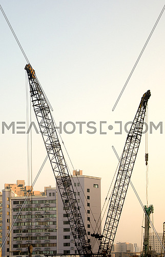 shanghai construction crane over modern buildings