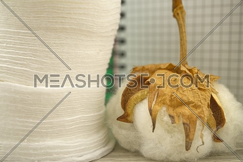 Natural cotton stem boll and stack of makeup remover facial cotton pads placed in front of of wire bound notepad. Organic production concept