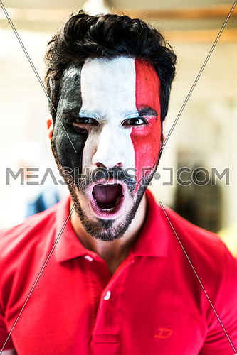 close up for young man has full face paint of egyptian flag