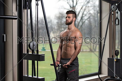 Young Handsome Man Exercise Biceps On Cable Machine