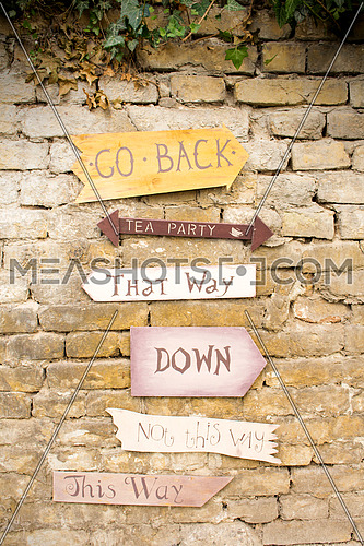 Wooden signs that spells Go Back, Tea Party, That Way, Down, Not This Way, This Way hanging on the Wall
