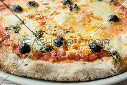 Pizza with buffalo mozzarella,tomatoes,olives and basil,view from above