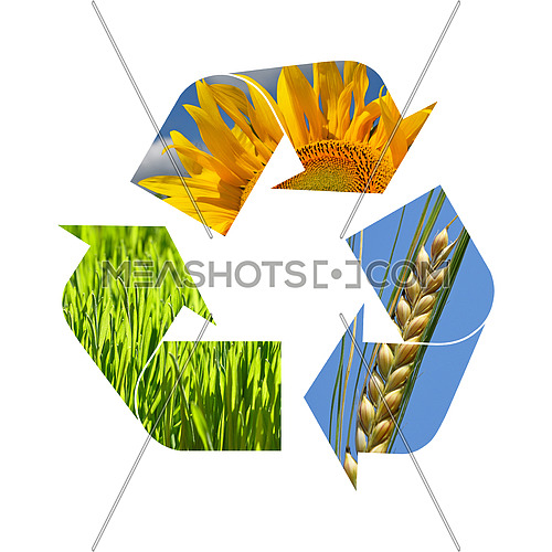 Illustration recycling symbol of agriculture crop, sunflower, wheat, grass isolated on white background