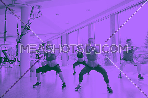 group of young people working out in a fitness gym duo tone