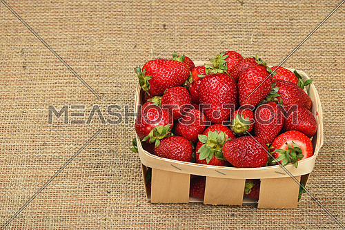 Wicker wooden basket full of mellow fresh red summer strawberries on jute burlap canvas background, high angle view