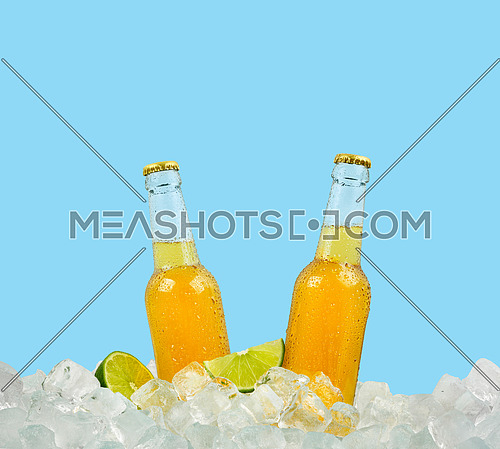 Close up two clear glass bottles of cold lager beer on ice cubes at retail display isolated on blue background, low angle side view