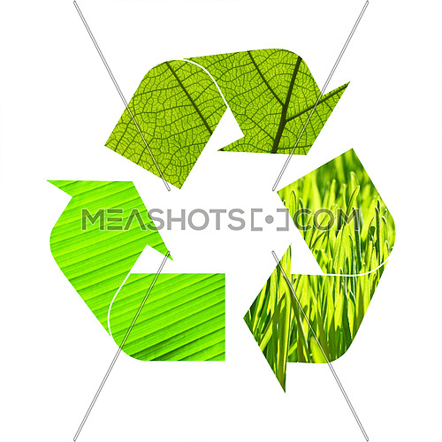 Illustration recycling symbol of green grass and leaves foliage isolated on white background