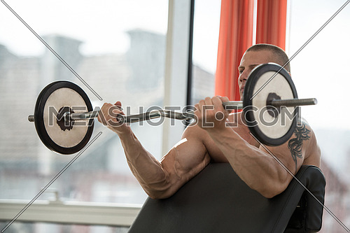 Muscular Man Doing Heavy Weight Exercise For Biceps With Barbell