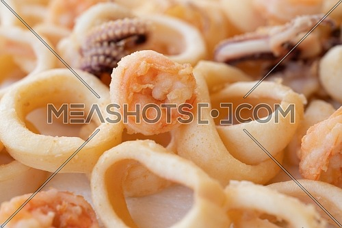 fried squids or octopus (calamari) and prawns close up, isolated on white background