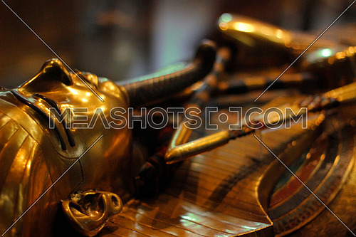 Tut Ankh Amon statue in the egyptian museum