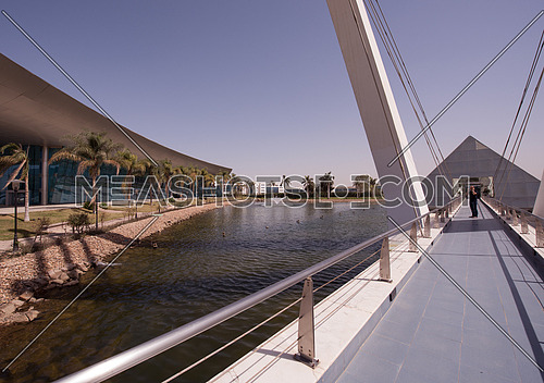 wide angle shot of businessman on modern cable  bridge while speaking on phone