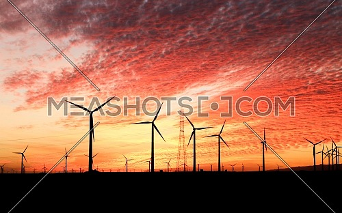Windmills at Red Bloody Sunset
