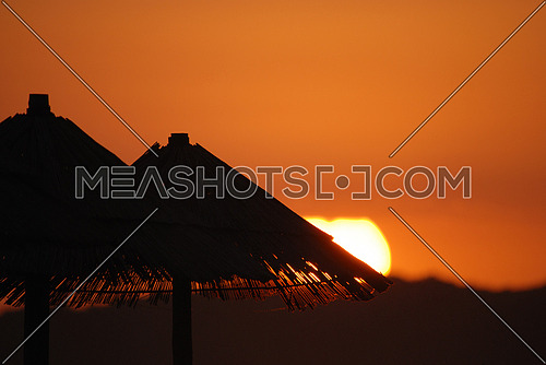 sunshine on beach with beach umbrellas silhouette