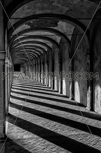 A black and white arch way with pillar shadows