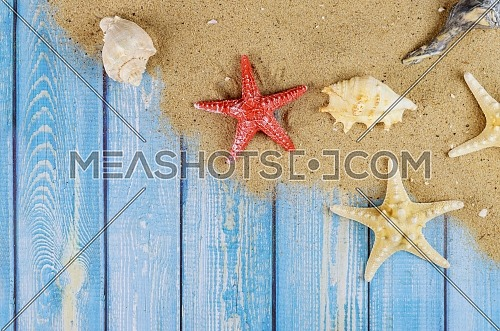 Old blue wooden boards with shell starfish on beach sand