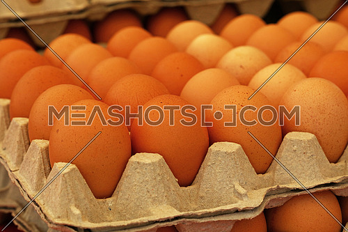 Close up many fresh brown chicken eggs in tray carton at retail display of farmers market, low, angle view perspective