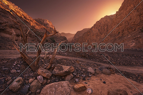 Canyon surrounded by Mountains in a beautiful sunrise with sun reflection on the left mountain, and a dead tree branch in Jais mountain valley