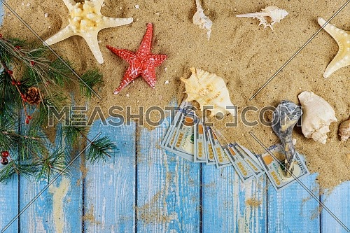 Sea shell on sand starfish summer winter vacation branch of Christmas tree and american hundred dollar bills on blue wooden