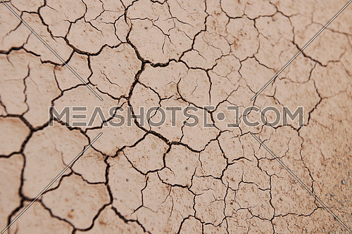dry brown  ground background