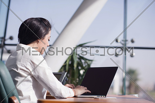 Young female executive working in the office using laptop