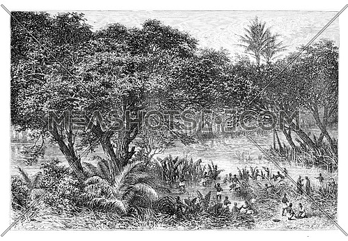 Negroes Collecting Turtles on the Banks of the Guengo River, in Angola, Southern Africa, drawing by De Bar based on writings, vintage illustration. Le Tour du Monde, Travel Journal, 1881