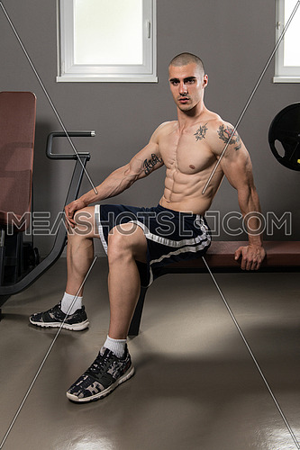 Good Looking And Attractive Young Man With Muscular Body Relaxing In Gym