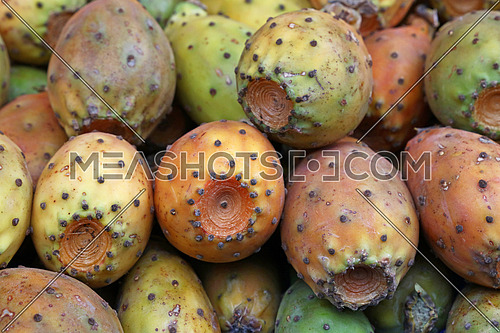 Fresh Opuntia ficus-indica (Indian fig, Prickly pear) cactus fruits sale on retail market stall display, close up