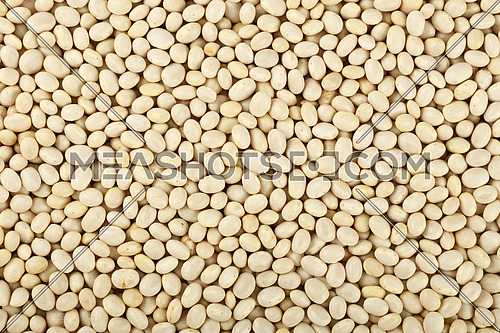 White frigole kidney beans close up pattern background, elevated top view