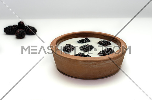 A pottery bowel full of yogurt and blackberries on a white background