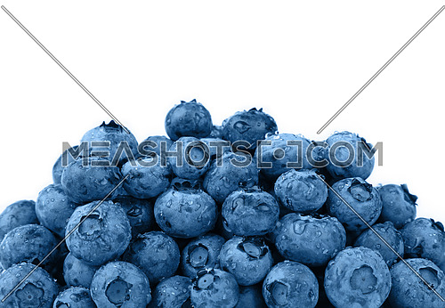 Close up heap of blue toned fresh washed wet blueberry berries with water drops isolated on white background, low angle view
