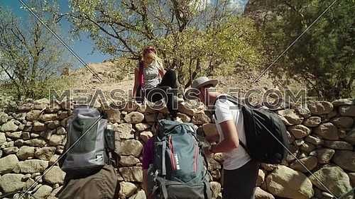 Reveal shot for group of tourists and one climbing fence of rocks to collect almonds from tree with bedouin guide showing almond trees while explore Sinai Mountain for wadi Freij at day.