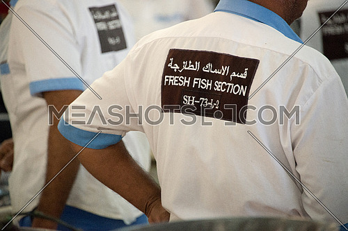 Fish Market In Dubai