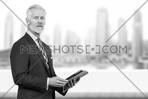 Portrait of senior businessman in front of the big city