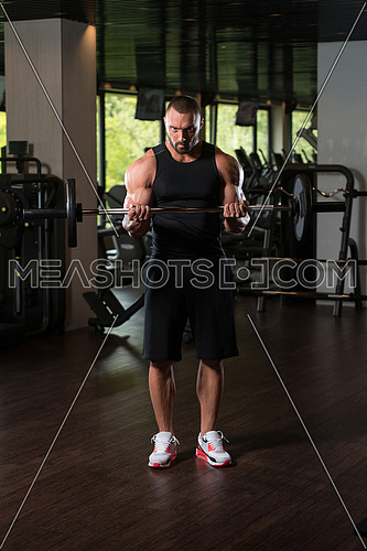 Big Man Standing Strong In The Gym And Exercising Biceps With Barbell - Muscular Athletic Bodybuilder Model Exercise In Fitness Center