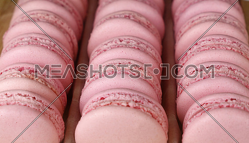 Fresh baked pink macaroon pastry cookies (macarons, macaroni) in retail store display, close up, high angle view