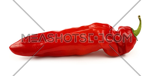 One whole fresh red sweet paprika pepper isolated on white background, close up, side low angle view