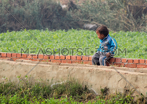 A kid sitting alone in a farm in the rural areas of egypt